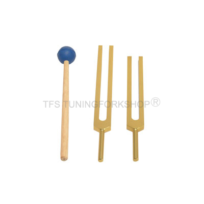 Gold Finish C & G Whole Body Tuning Forks